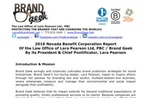Brand Geek Corporate Report