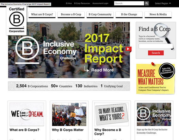 BrandGeek B Impact Assessment