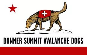 Donner Summit Avalanche Dogs